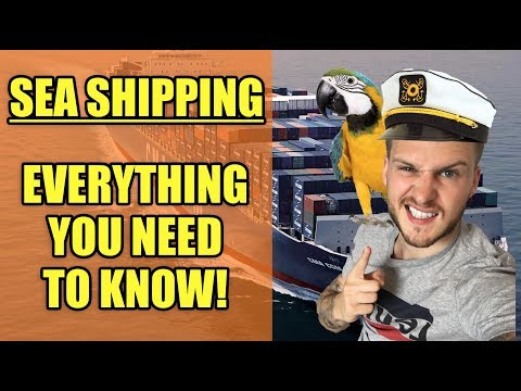SEA SHIPPING / Freight Forwarders - Everything you need to know -  USA and UK