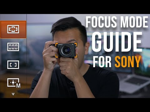 Sony Video AutoFocus Tutorial for a9 a7RII a6500 a6300 a6000