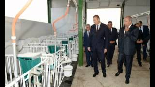 Ильхам Алиев принял участие в открытии в Агджабеди животноводческого комплекса Агат-агро(, 2013-09-04T11:14:23.000Z)