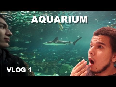 I PET A SHARK !! WE'RE GOING TO THE AQUARIUM !!! VLOG 1 🐠🐠🐠