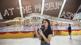 ASMR AT THE MUSEUM    PUBLIC 🇲🇾