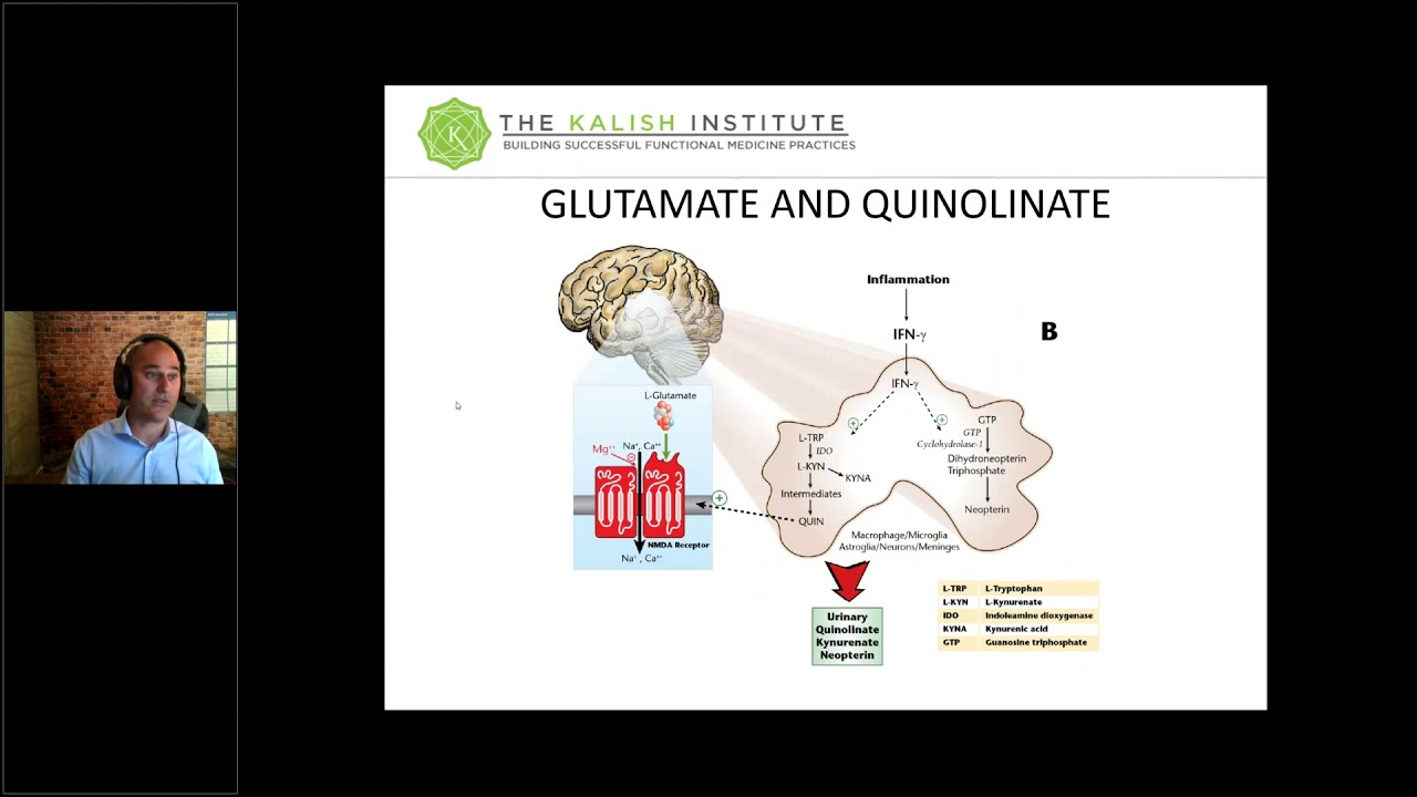 Download Neurotransmitters: The Inflamed Brain