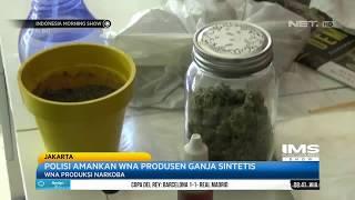 Download lagu Polisi Amankan WNA Produsen Ganja Sintetis MP3