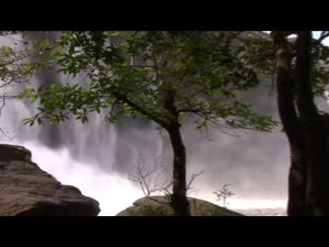 OTAYKU PADUNNA POONKUYILE, sung by vaikam Vijaya lakshmi