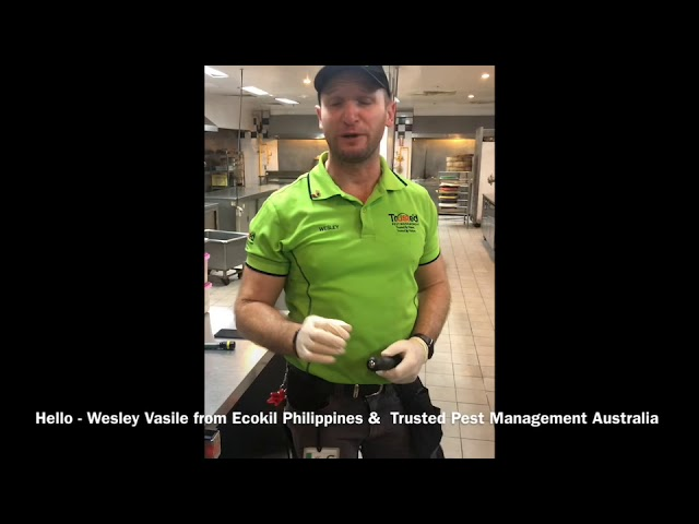 Part 2- How to do a General Pest Control Inspection in a Commercial Kitchen for restaurants & cafes