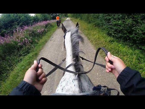 Sunshine Riding School - Horse Riding GoPro