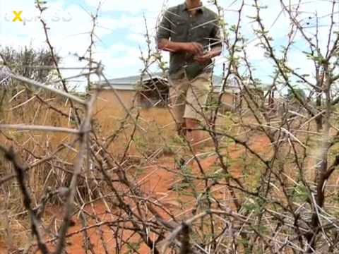 SA Tourism: Discovering the Northern Cape, Kimberley (23.11.2012)