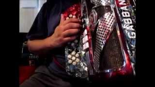 que tono de acordeon comprar consejos para principiantes sol o fa?