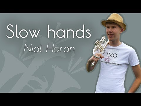 Niall Horan - Slow hands (TMO Cover)