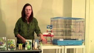 Prevue Hendryx Parakeet/Cockatiel Starter Kit and Flight Cage