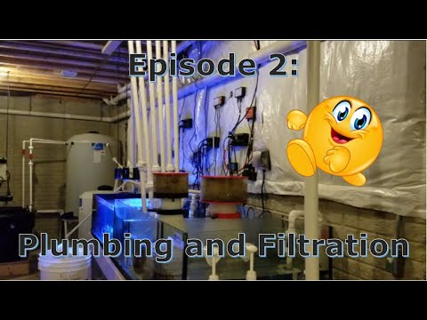 Episode 2: Plumbing And Filtration