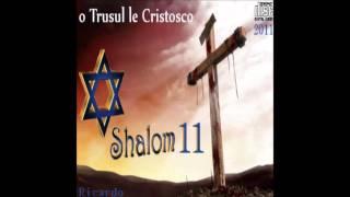 Ricardo Kwiek Shalom 11 Track 3