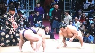 平成28年大相撲九州場所 11月23日 満員御礼 Sumo -Kyushu Basho.