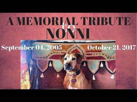 A Memorial Tribute to Nonni, 09.04.05-10.21.17