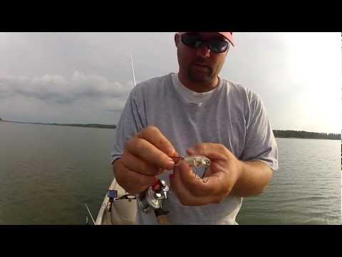 BEST WAY TO KEEP CHICKEN LIVERS ON HOOK - CATFISHING from YouTube · Duration:  4 minutes 49 seconds