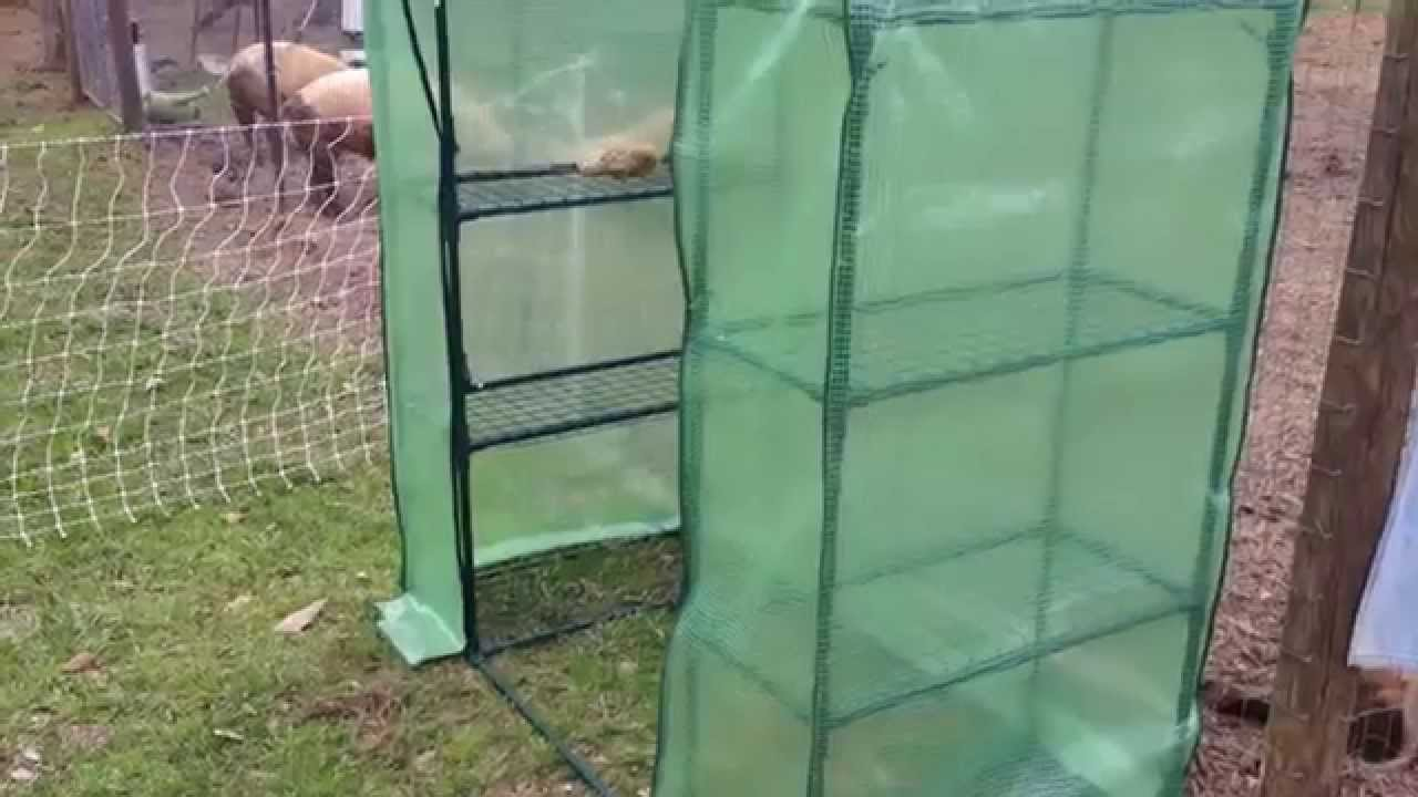 Putting together a small greenhouse from tractor supply for Making a small greenhouse