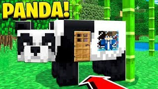 How to Live Inside a PANDA in Minecraft Tutorial! (Pocket Edition, PS4/3, Xbox, PC, Switch) thumbnail