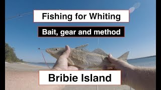Whiting fishing, gear, bait and method. Bribie Island, north of Brisbane.