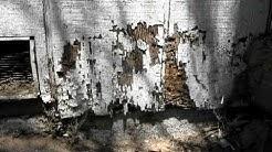 Termite Control : Will Termites Eat Treated Lumber?