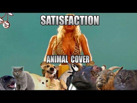 Benny Benassi - Satisfaction (Animal Cover)