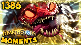 The RISE OF A NEW META, AKA The SWING TURN Meta!! | Hearthstone Daily Moments Ep.1386