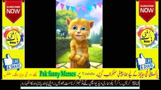 Best Pakistani funny Memes video | try not to laugh challenge|funny Whatsapp status vol 15