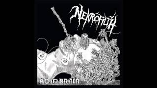 Nekrofilth - Acid Brain (2014) full EP
