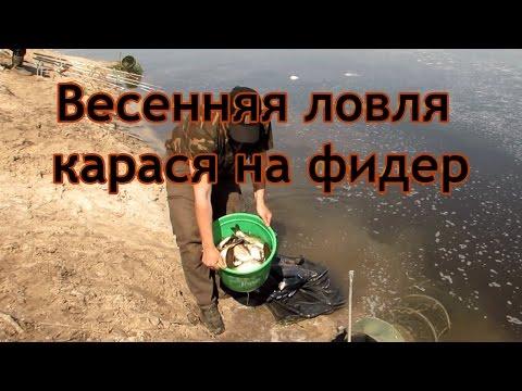 рыбалка на воронеже держи плотине