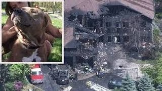 Pit Bull Saves Woman from Burning Building
