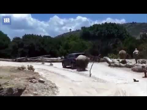 Randy Rose - When Rhinos Attack
