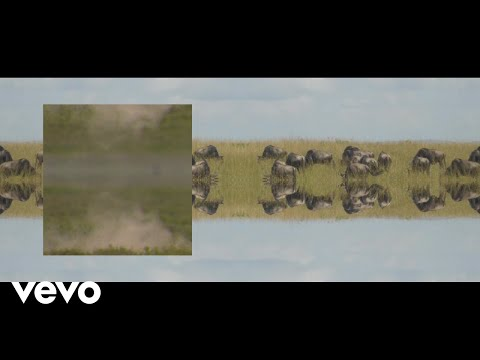 Mumford & Sons - Mumford & Sons and National Geographic present: Picture You + Darkness...