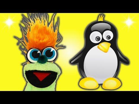 FUNNY PENGUIN JOKE! - JOKES FOR KIDS! 100% Child-Appropriate Jokes! FUNNY! Puffin! Sock Puppet!