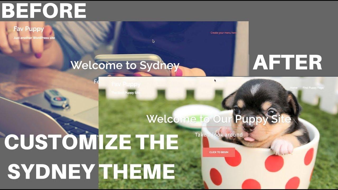 Sydney WordPress Theme: How to Customize