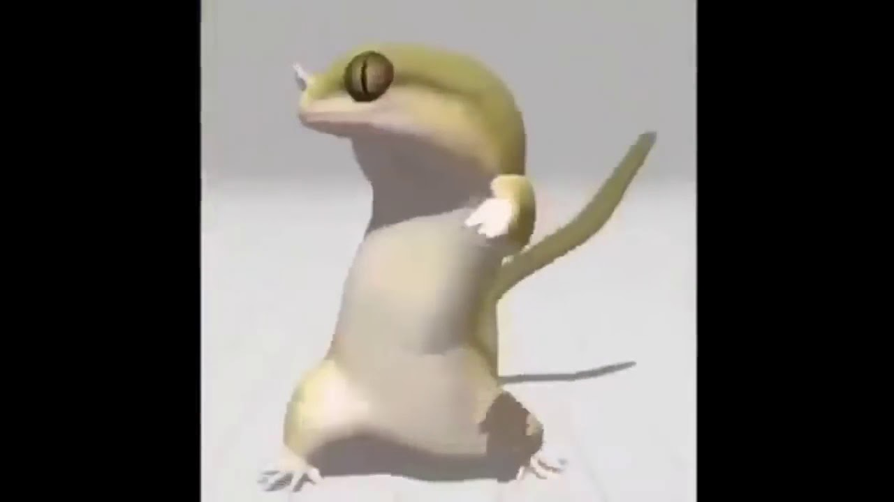 Driftveil City Dancing Lizard 30 Minutes Youtube Knowledge let's not lie, someone here was expecting me to do the driftveil city dancing lizard meme on roblox, right? driftveil city dancing lizard 30