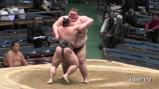 2017年大阪場所での大露羅 vs 春光の取組。2017年8月に体重288キロにな...