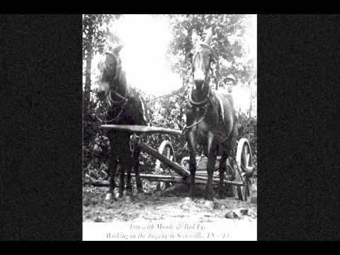 Buddy and Julie Miller   -  Ellis County