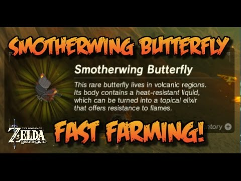 SMOTHERWING BUTTERFLY - FAST FARMING GUIDE! Zelda: Breath of the Wild