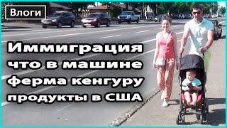 VLOG 🎥  ФЕРМА КЕНГУРУ, ЧТО В МОЕЙ МАШИНЕ, ИММИГРАЦИЯ | Много рассуждений о США 💜  LilyBoiko(, 2016-05-25T23:59:19.000Z)