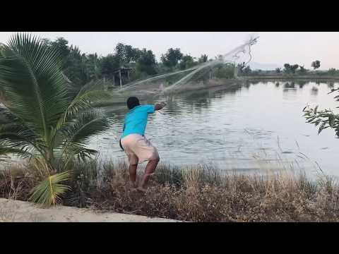 Cast netting  good catch