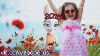 Zoobe зайка - чувства :)