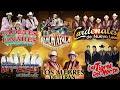 Norteñas viejitas: Invasores De Nuevo León, Tigres del Norte, Cadetes De Linares, Ramon Ayala..y