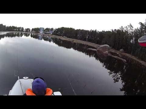 Три рыбалки.