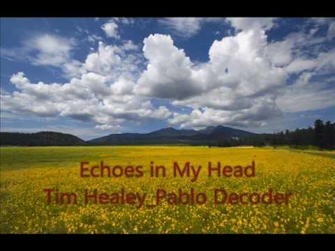 Echoes in My Head (orignal mix) Tim Healey_Pablo Decoder