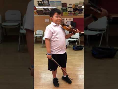 Suzuki Violin Assessment VR's (Book 1)