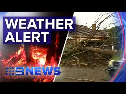 Weather Warnings For Sydney, Melbourne, Adelaide | Nine News Australia