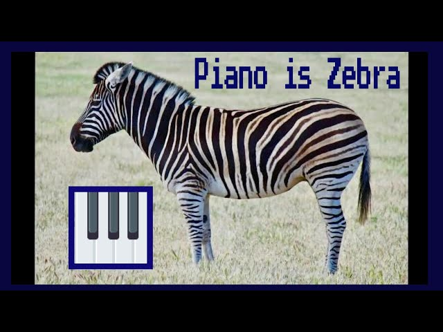Zebra turns in to Piano