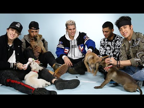 CNCO Plays With Puppies While Answering Fan Questions