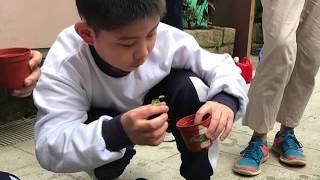Publication Date: 2018-11-27 | Video Title: 九龍婦女福利會李炳紀念學校 - 綠色環保活動 2017-20
