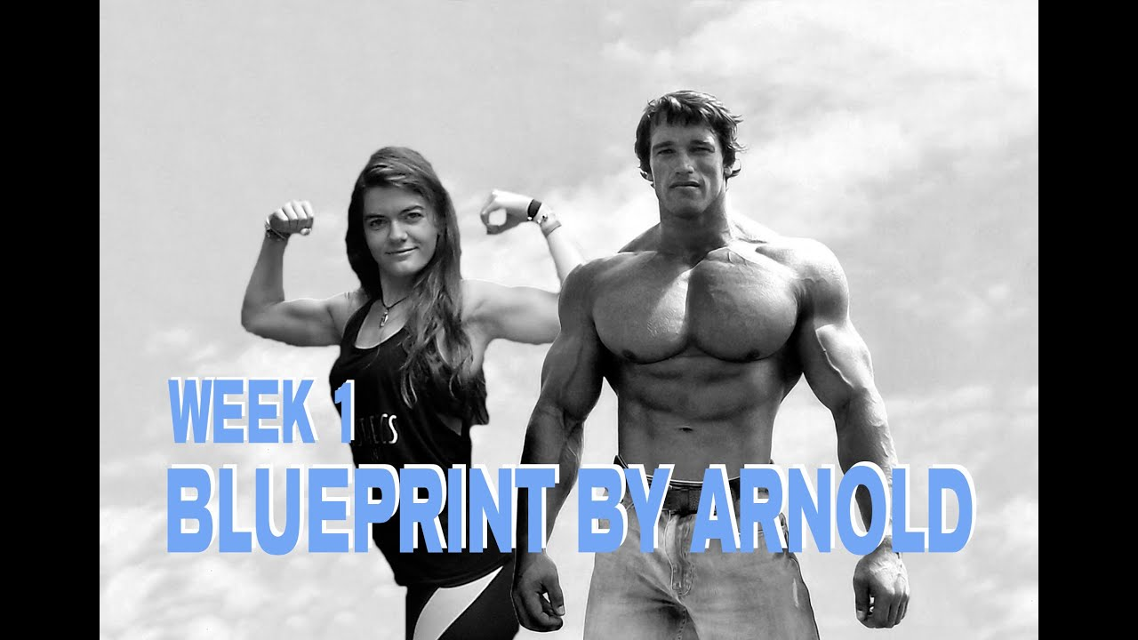Arnold schwarzenegger blueprint week 1 youtube arnold schwarzenegger blueprint week 1 malvernweather Gallery