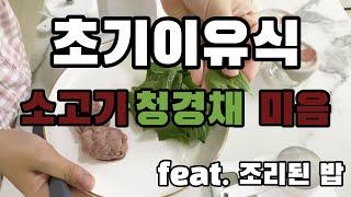 베이비 브레짜 이유식 마스터기 - 소고기청경채 미음 만…